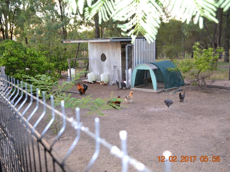 12 HEDGES CT LAIDLEY HEIGHTS QLD 4341 Image 22