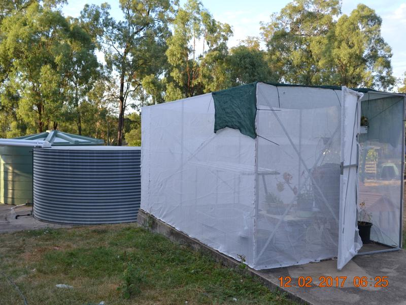12 HEDGES CT LAIDLEY HEIGHTS QLD 4341 Image 23
