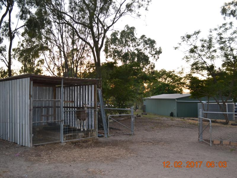 12 HEDGES CT LAIDLEY HEIGHTS QLD 4341 Image 28