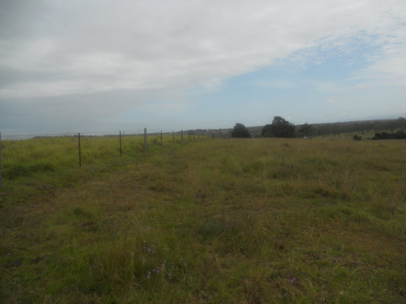 HATTON VALE QLD 4341 (address available on request) Image 1