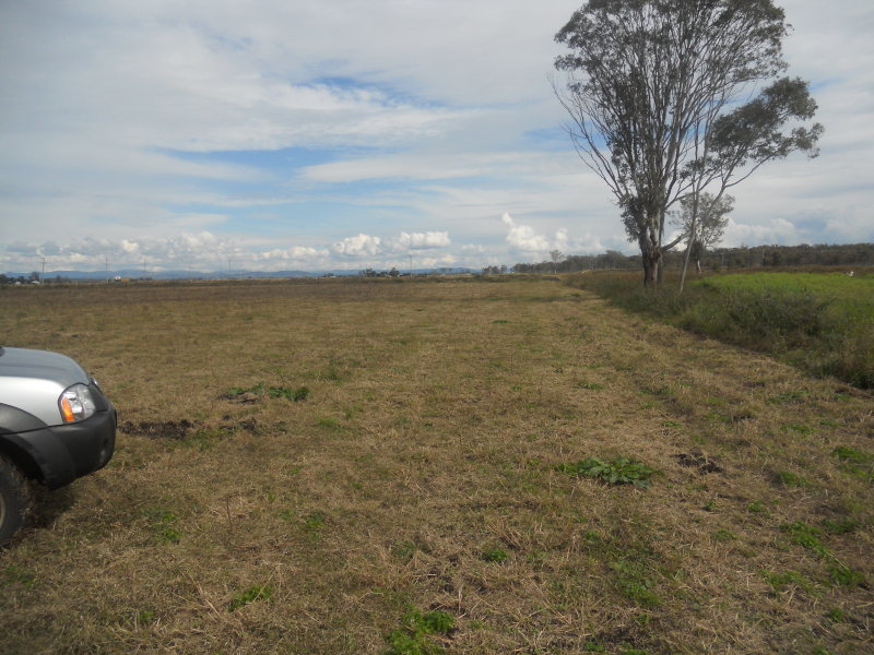 KENTVILLE QLD 4341 (address available on request) Image 1