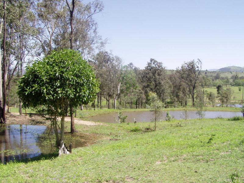 LAIDLEY CREEK WEST QLD 4341 (address available on request) Image 1