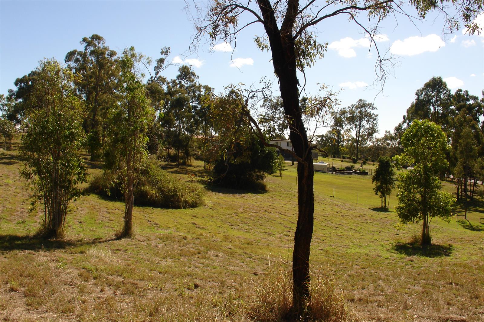 88 LAKES DRIVE LAIDLEY HEIGHTS QLD 4341 Image 0