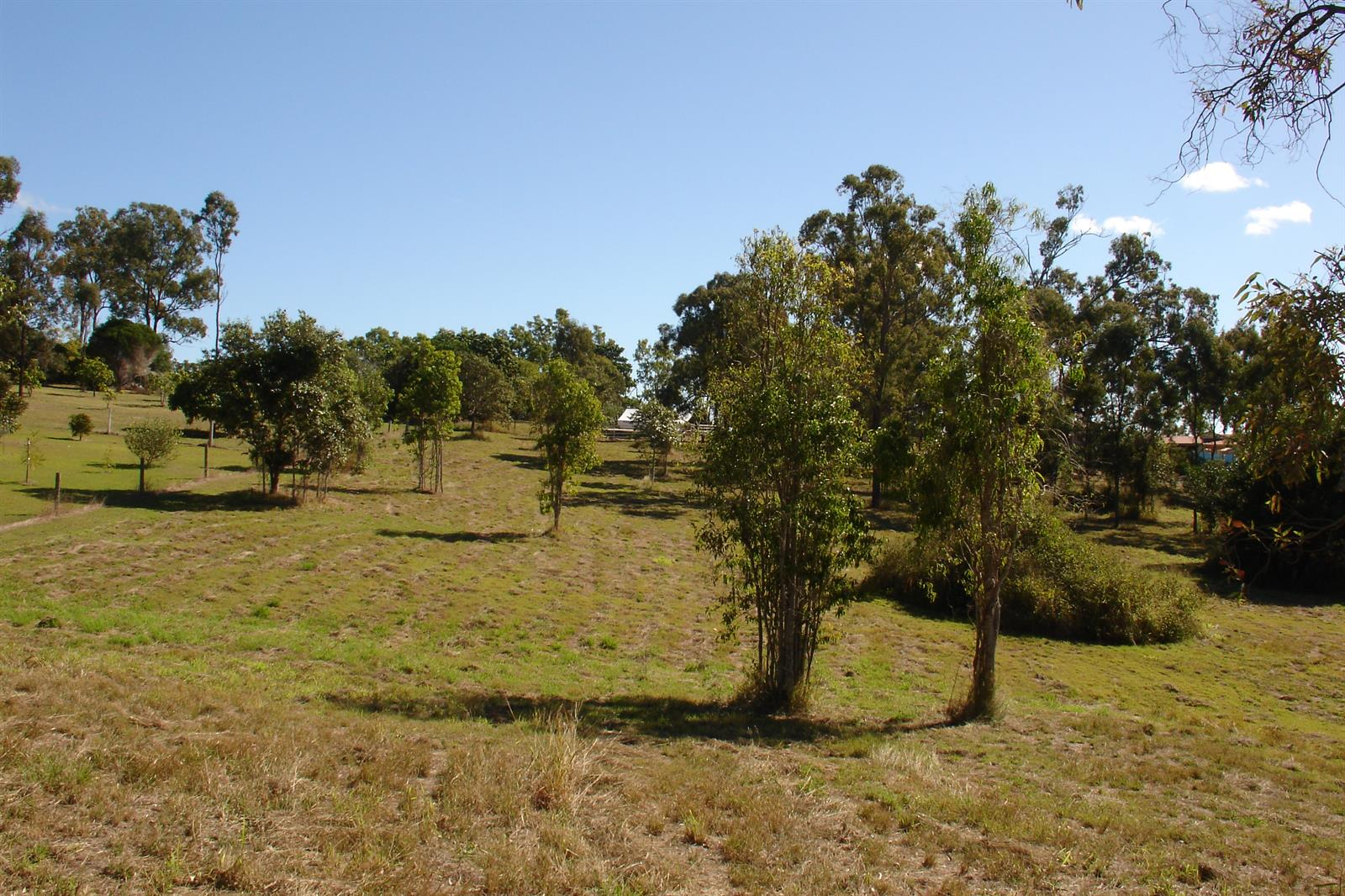 88 LAKES DRIVE LAIDLEY HEIGHTS QLD 4341 Image 2