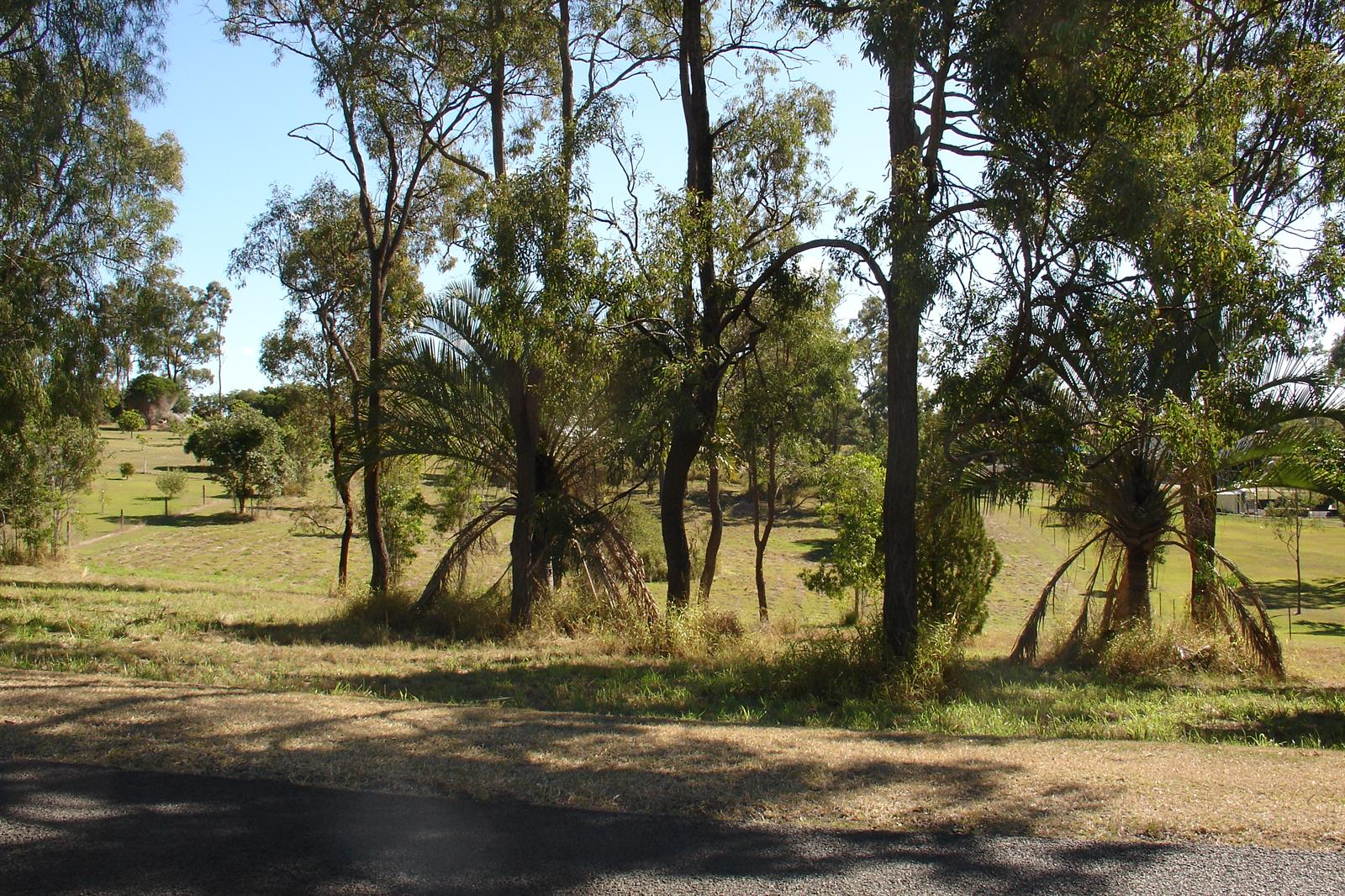 88 LAKES DRIVE LAIDLEY HEIGHTS QLD 4341 Image 5