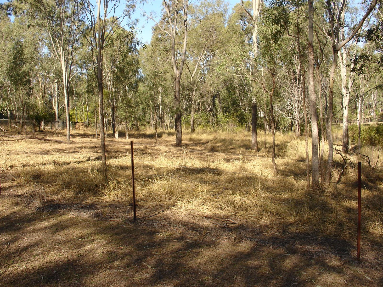146 Lakes Drive LAIDLEY HEIGHTS QLD 4341 Image 8